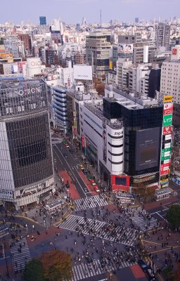 Tokyo-2_Shibuya2_11-28-09_4
