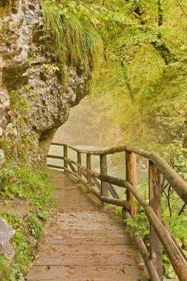 Bled_gorge..dited-2.png