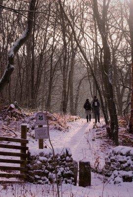 Derbyshire..kers_12.jpg