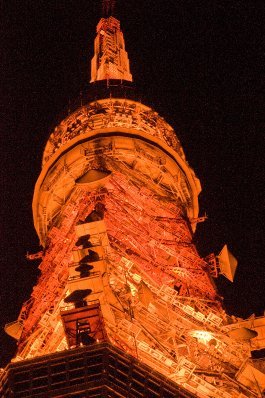 Tokyo_Tower_11-14-09_3566