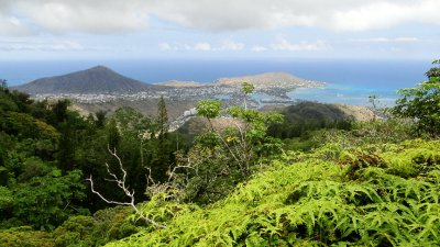 View from the Koolau Mountain Range, Oahu