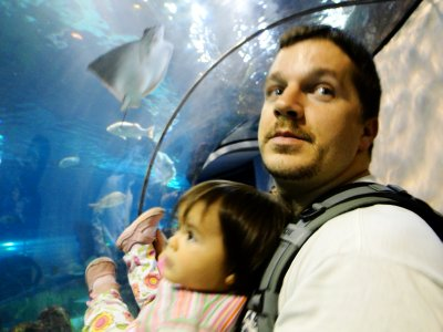 Father and daughter in the aquarium