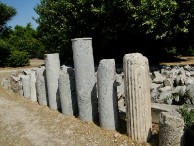 Remaining columns in Agora