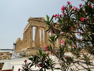 Flowers and Parthenon
