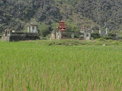 Grave yards and rice fields