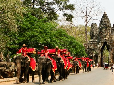 Elephants in the South Gate of Angkor Thom