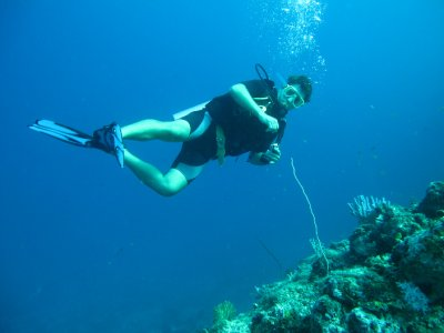 Jay diving in Sipadan, Borneo