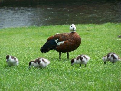 2009-11-19..family2.jpg