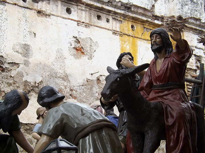 Jesus Arrives on a Donkey