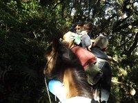 16-Desending_On_Horseback.jpg