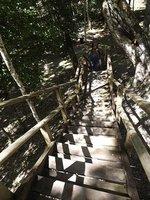 6d2-Yaxha-..d-216-climb.jpg