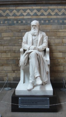 The one and only Charles Darwin, Natural History Museum, London, UK
