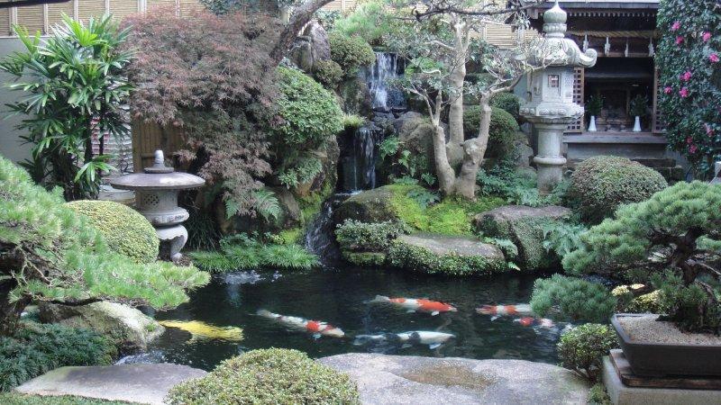 large_Huge_Japan..iyajima.jpg
