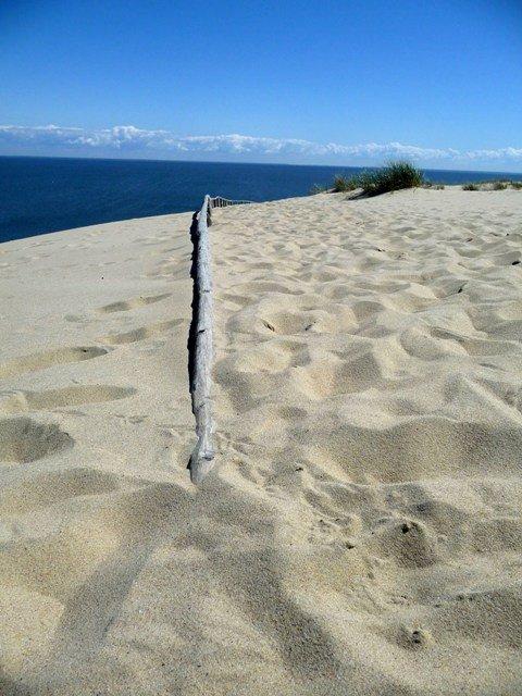 Sand dunes in Nida