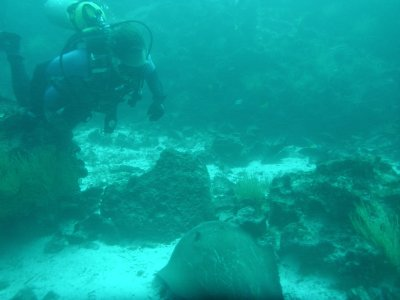 Patrick diving with the Sting Ray off Gordon Rocks in the Galapagos Islands