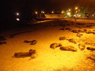 San Christbbal beach at night