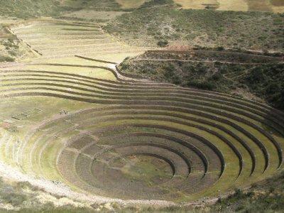 Terracing in Moray