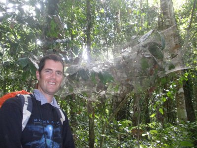Spiders web. Manu National Park, The Amazon Rainforest.
