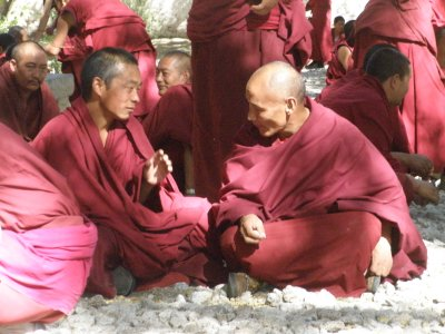 Monks at Sera Monastery (3)