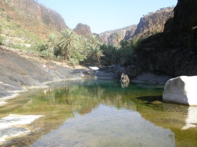 Rock pool in the wadi