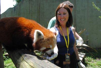 Red_Panda_..012_020.jpg