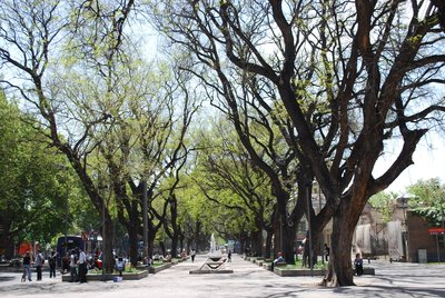 Mendoza Parklands