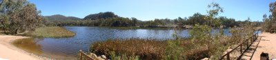 DS - Swamp Panoramic (Camp Beach)