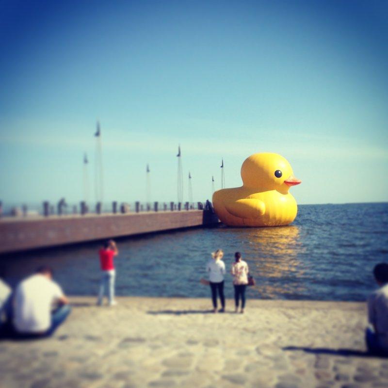 Big Duck made it to Baku