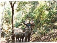 L'Elephant grande lentment