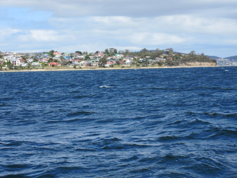 Hobart Jan 2011 030