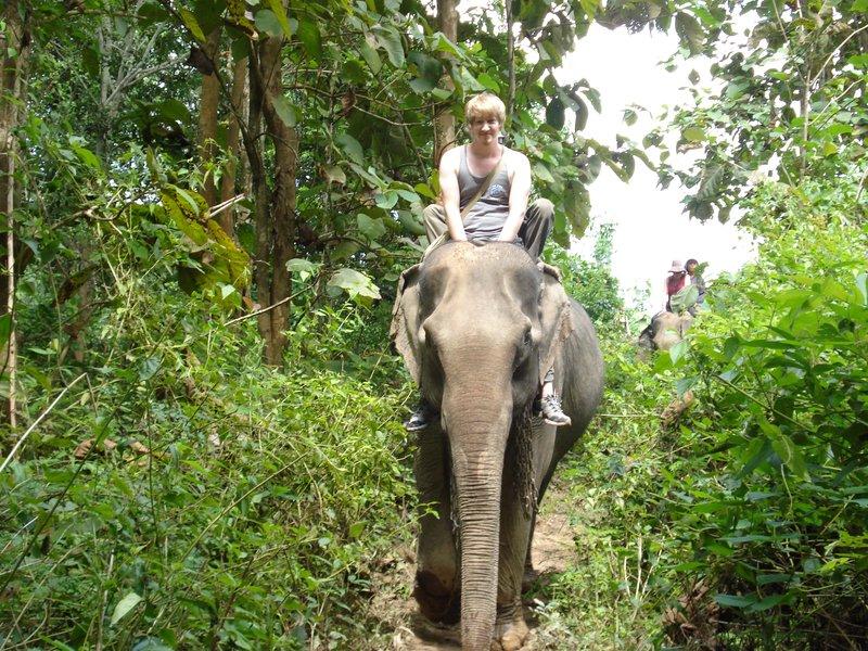 Elephant Trekkin'