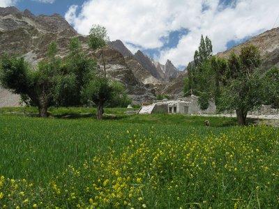 IMG_8804_C.._Ladakh.jpg
