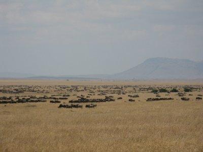IMG_9540_W..__Kenya.jpg
