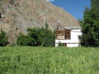 IMG_8917_g.._Ladakh.jpg