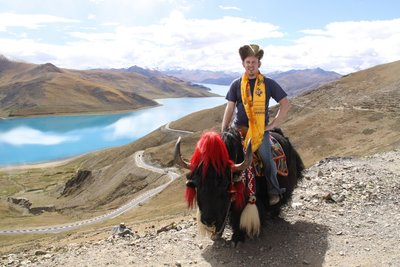 me on a yak at Yamdrok lake