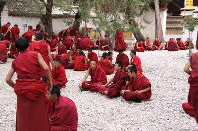Sera Monastery debating courtyard
