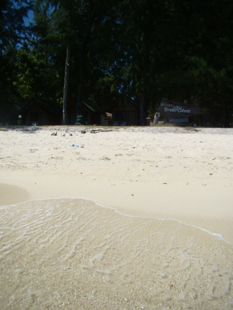 Our Lipe home