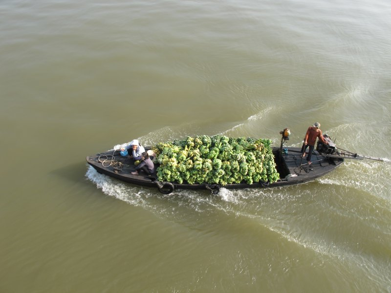 Bananas, barco, Mekong + FOTO!