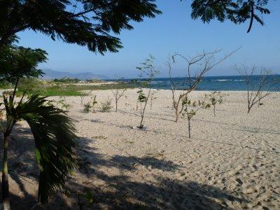 Mui Ne ... deserted beach