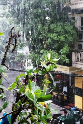 Downpour in Hanoi
