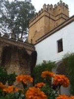 Flores_en_la_alc_zar.jpg