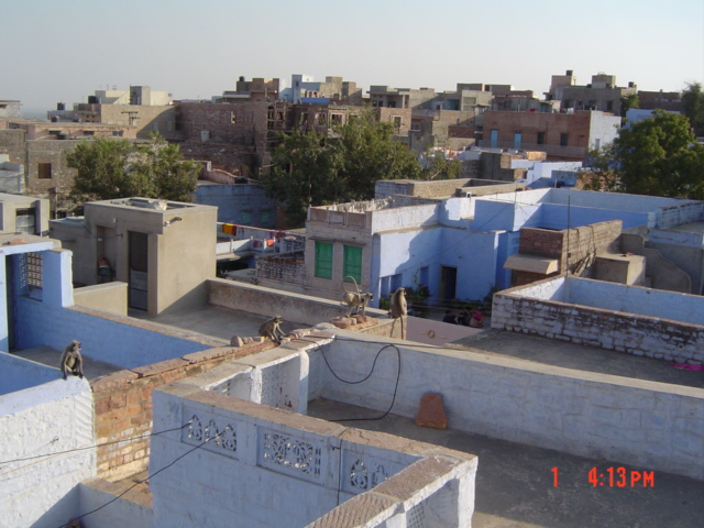 sheesh mahal paying guest house : blue city jodhpur
