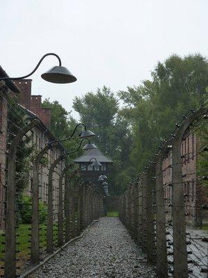 90_Auschwitz_barbed_wire.jpg