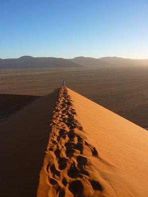 Ridge of Dune 45