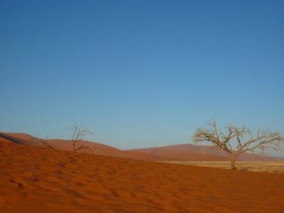 I Base of Dune 45
