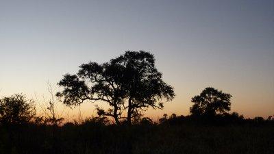 Sunset at the Okavango Delta, Botswana