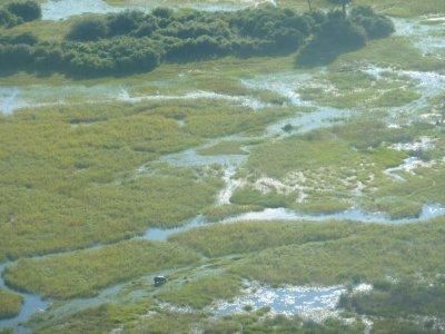 Spot the hippo. Okavango Delta, Botswana