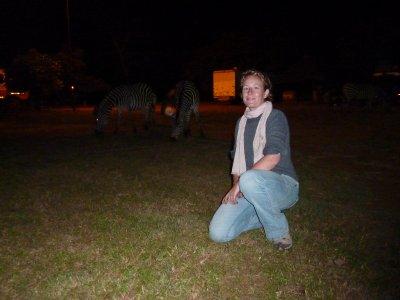 Zebra at the Eureka Capmsite