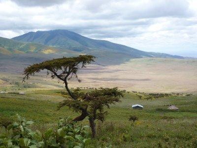 Entry to the Serengeti
