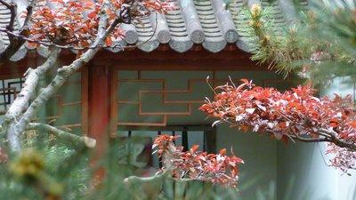 Chinese Gardens of Friendship, Sydney, Australia